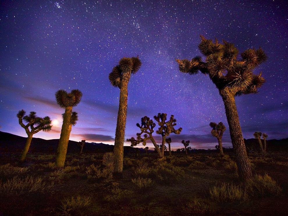 Национальный парк Долина смерти, США
