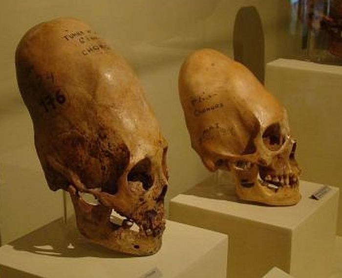 череп майя