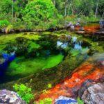 Река пяти цветов Каньо Кристалес