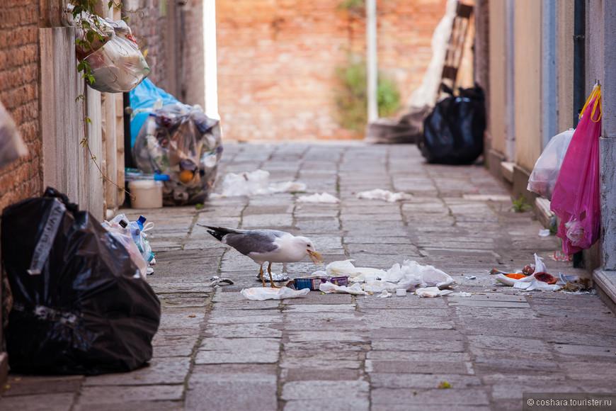 мусор на улице в венеции