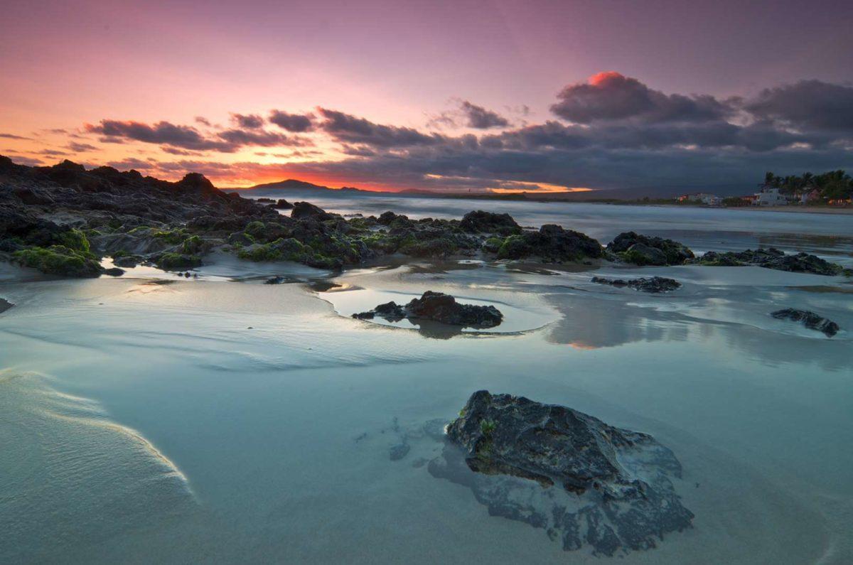 ночная жизнь Галапагосских островов
