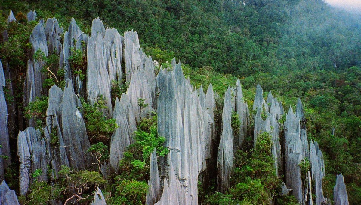 Национальный парк Гунунг Мулу,