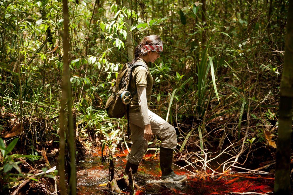 торфяные болота Борнео