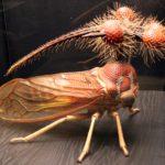 Самые жуткие насекомые по всему миру