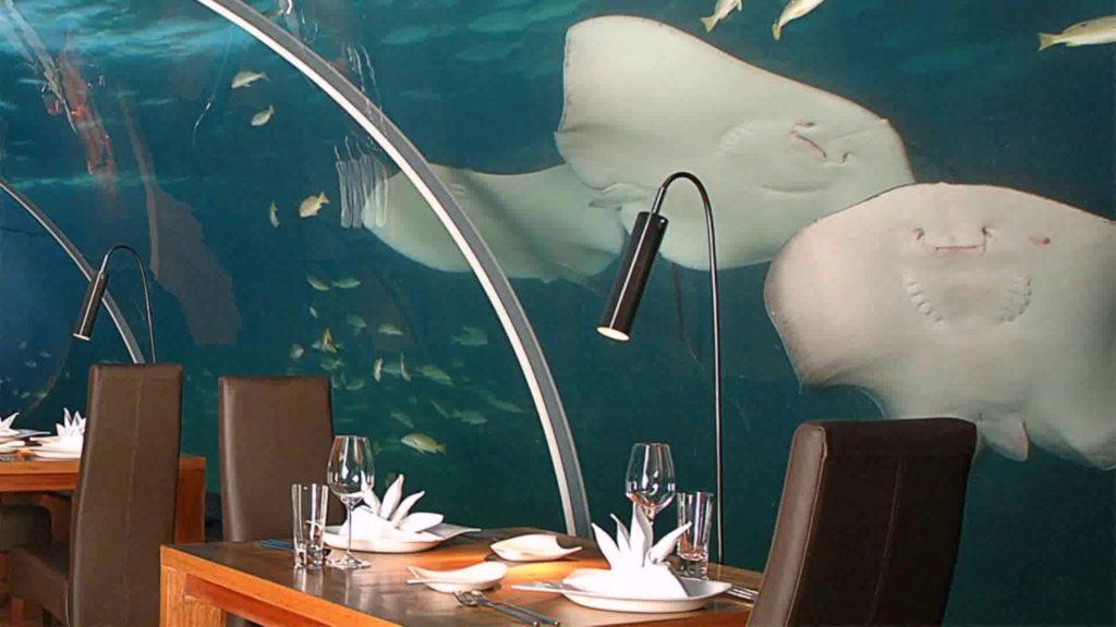 Подводный Ресторан Ithaa, Мальдивы