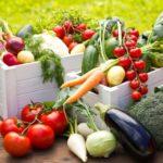 Странные и интересные факты об овощах