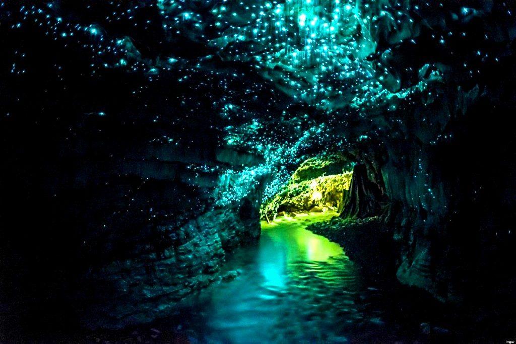 Waitomo-Glowworm-caves-Noua-Zeelanda