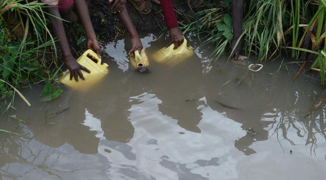 Жители Кении набирают воду из болота