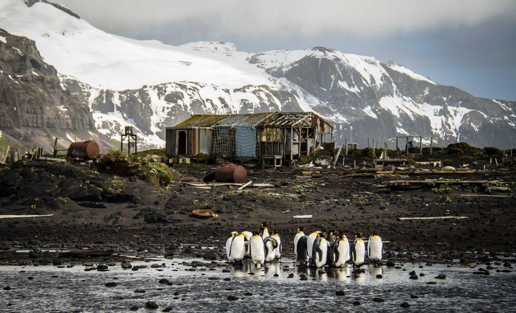 Остров Херд, Антарктида