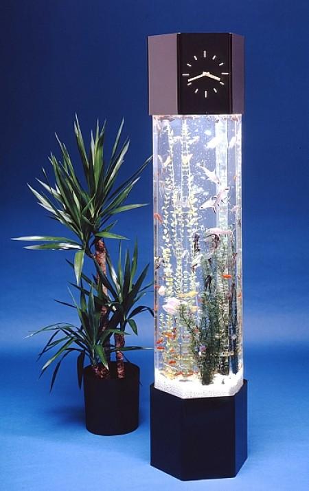 Вертикальный аквариум с часами