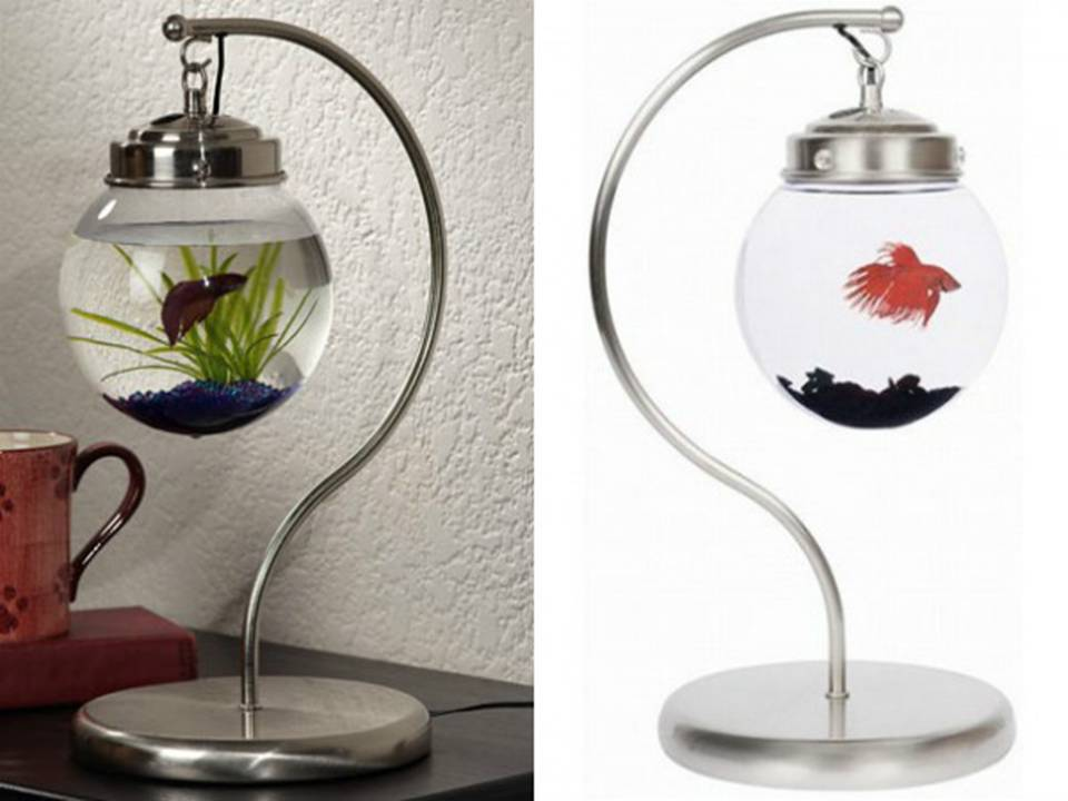 аквариум-лампа