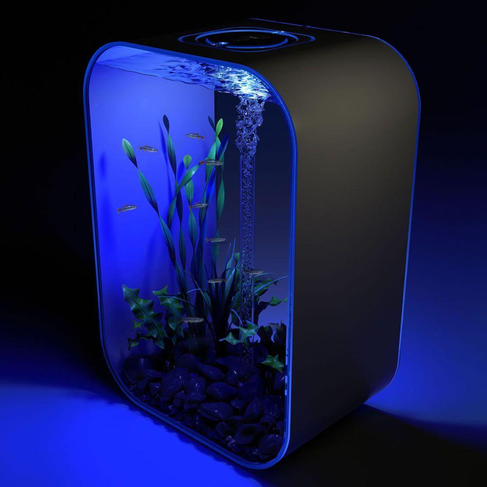 Солнечный аквариум