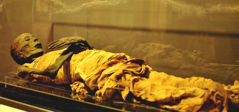 мумия тутанхамона