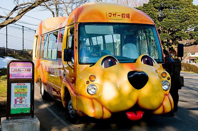 Школьные автобусы, Япония