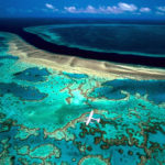Большой Барьерный риф – самые интересные факты