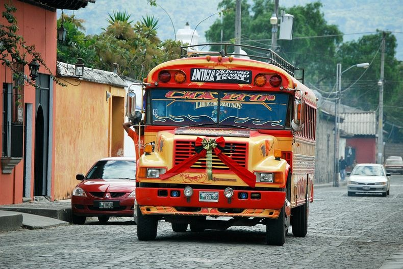 Куриный автобус