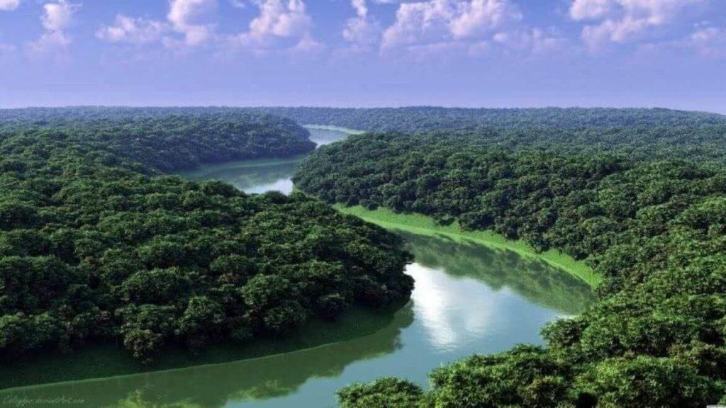 Амазонка