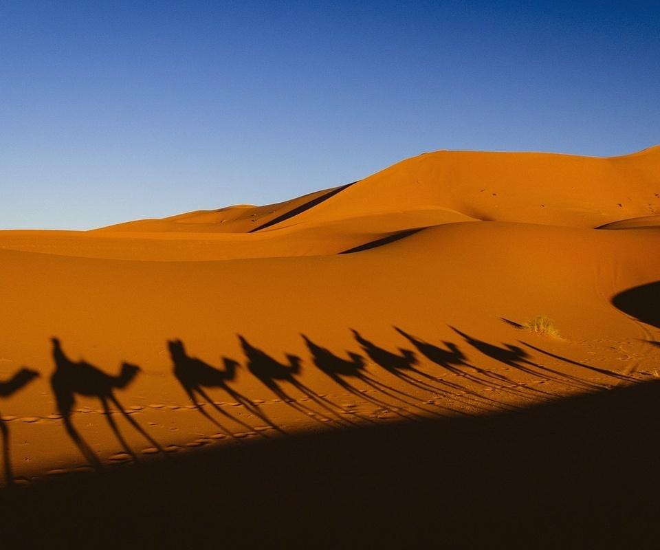 Пустыня Сахара в Северной Африке