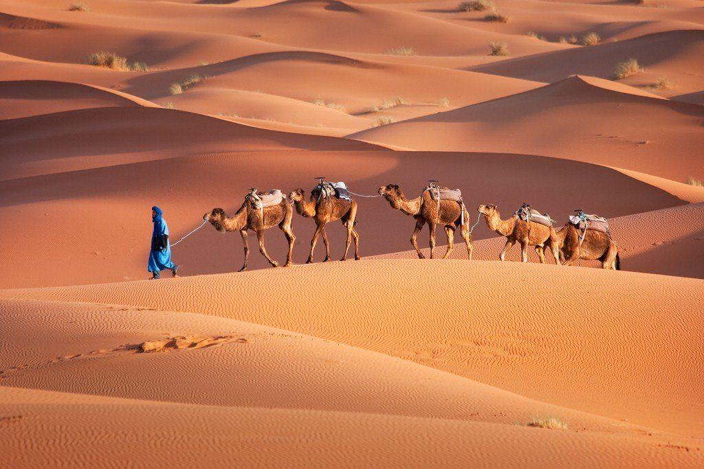 10 Интересных Фактов О Пустыне Сахара