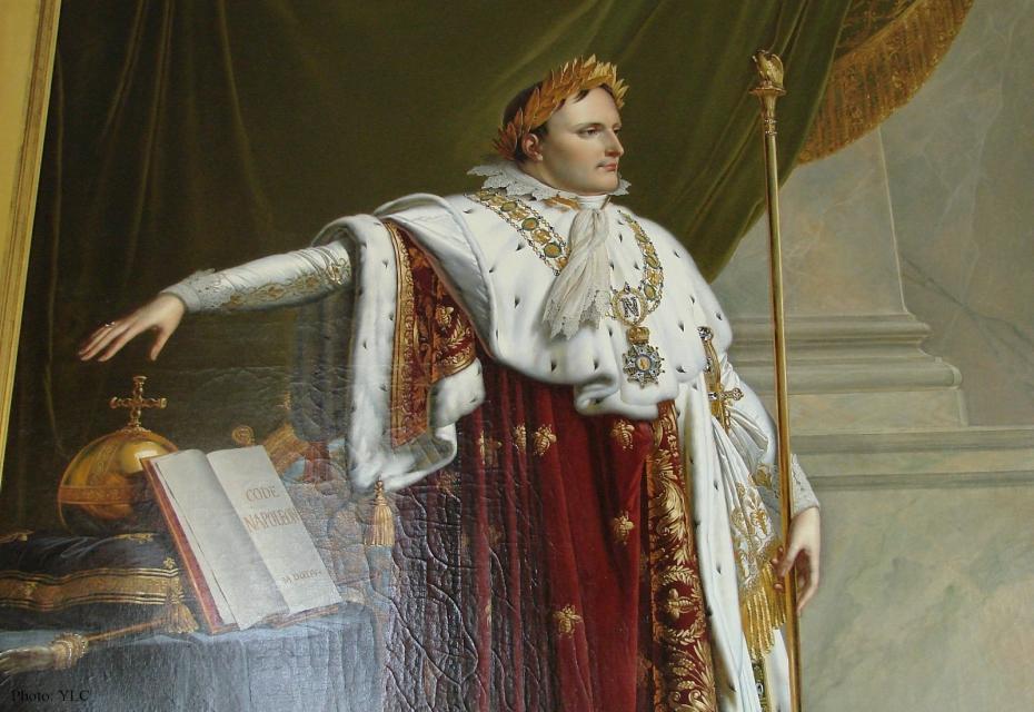 Наполеон Сделал Францию доминирующей державой