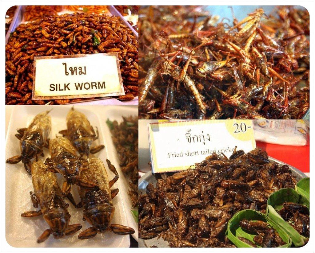 10 причин для введения съедобных насекомых в ваш рацион