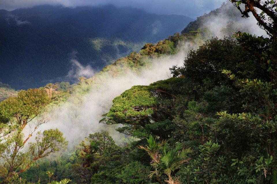 Национальный Парк Монтеверде, Коста-Рика