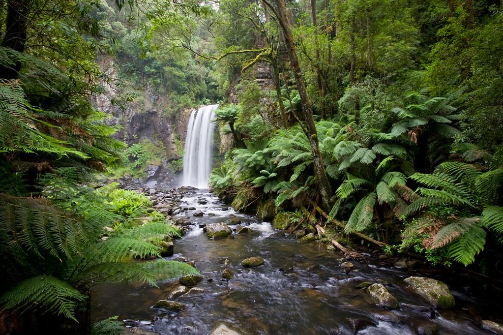 Национальный Парк Great Otway, Виктория, Австралия