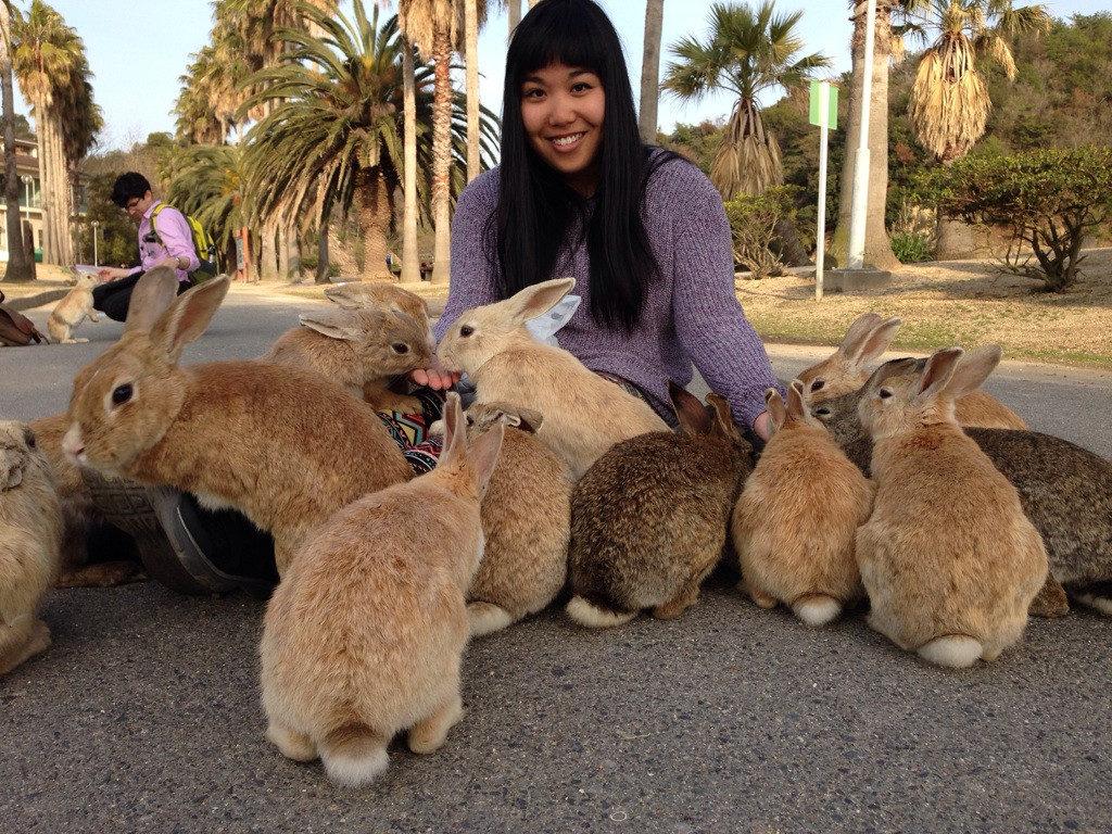Рай для кроликов в Ōkunoshima, Япония