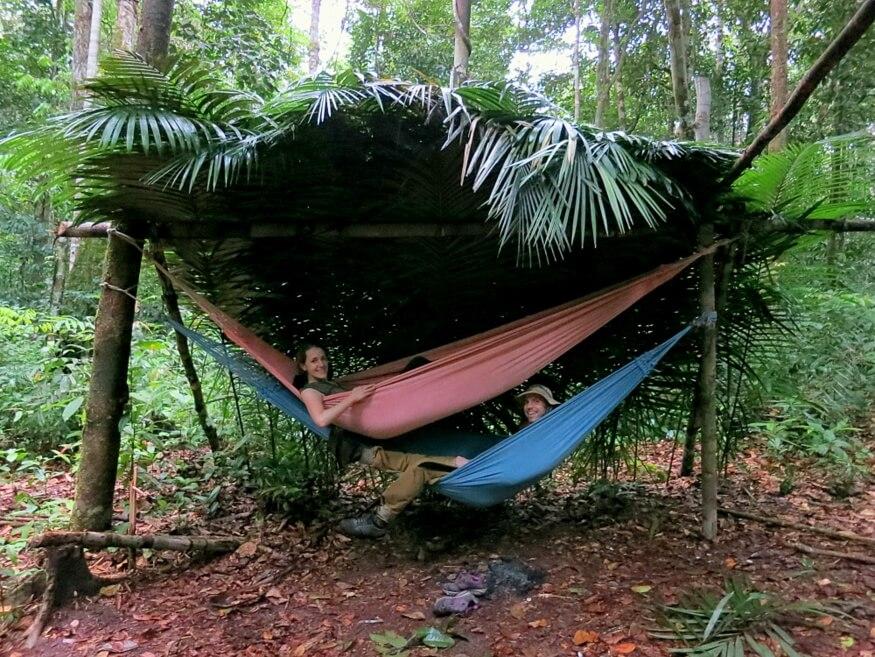 Тропические Леса Амазонки, Бразилия