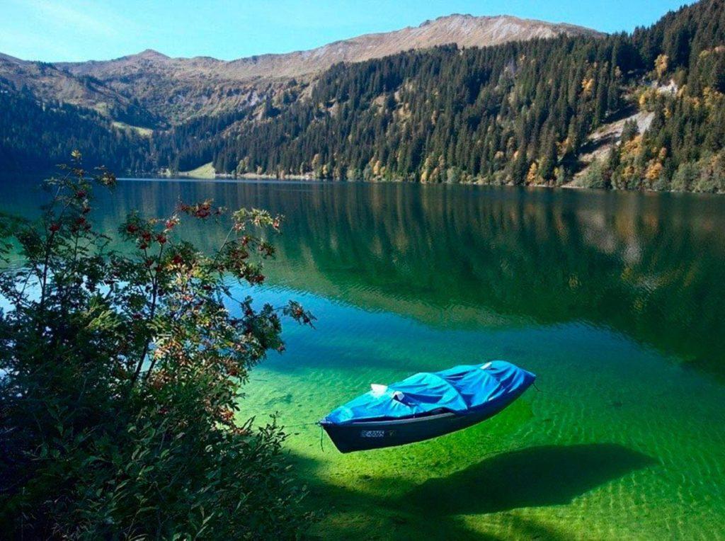 Уникальная экосистема Швейцарии