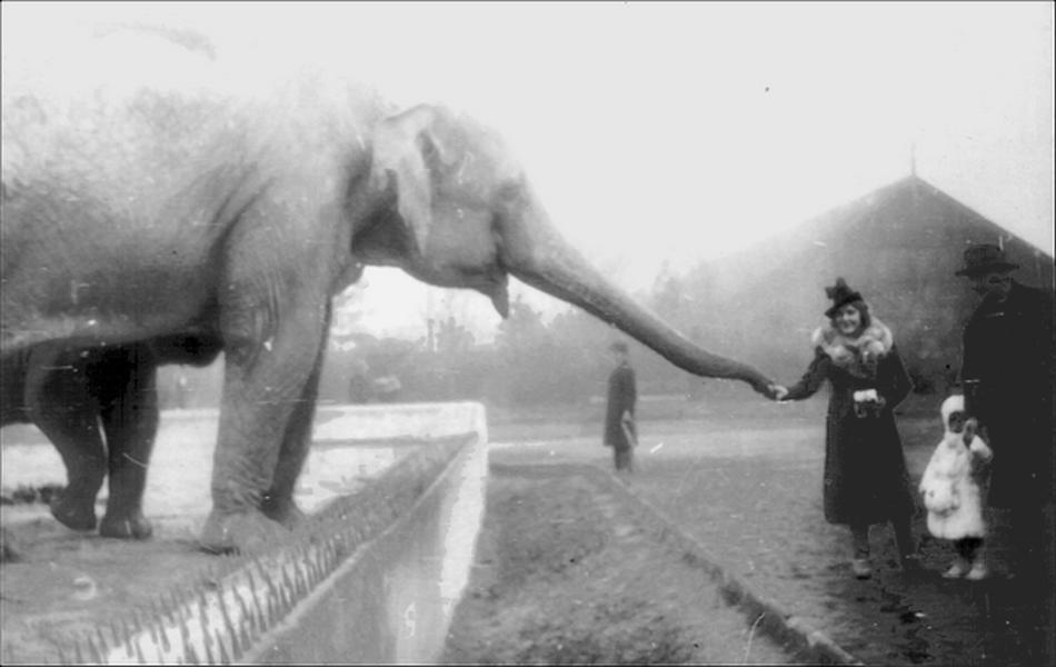 Варшавском зоопарке