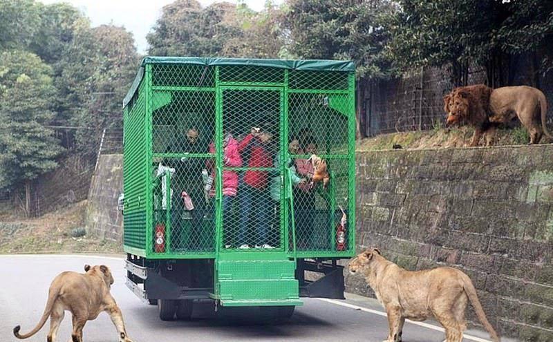 Lehe Ledu Зоопарк Дикой Природы