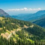 10 Самых Красивых Лесов В Мире