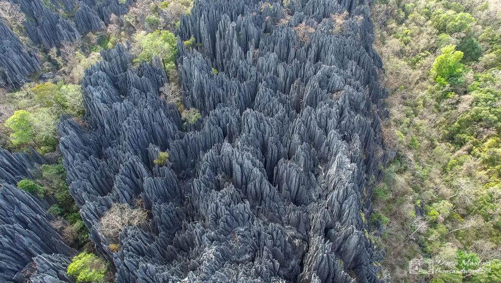 Каменный лес, Мадагаскар