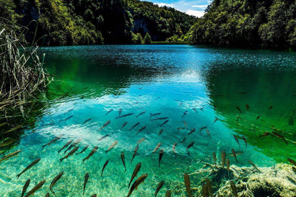 Озеро Плитвице, Хорватия