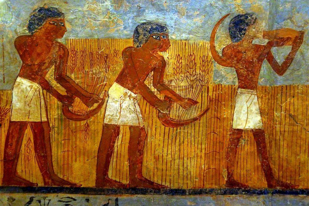 Рим завоевал Египет за зерно