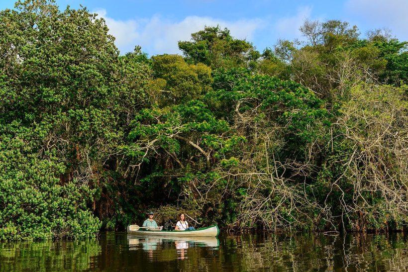 Водно-болотный парк Исимангалисо (iSimangaliso)