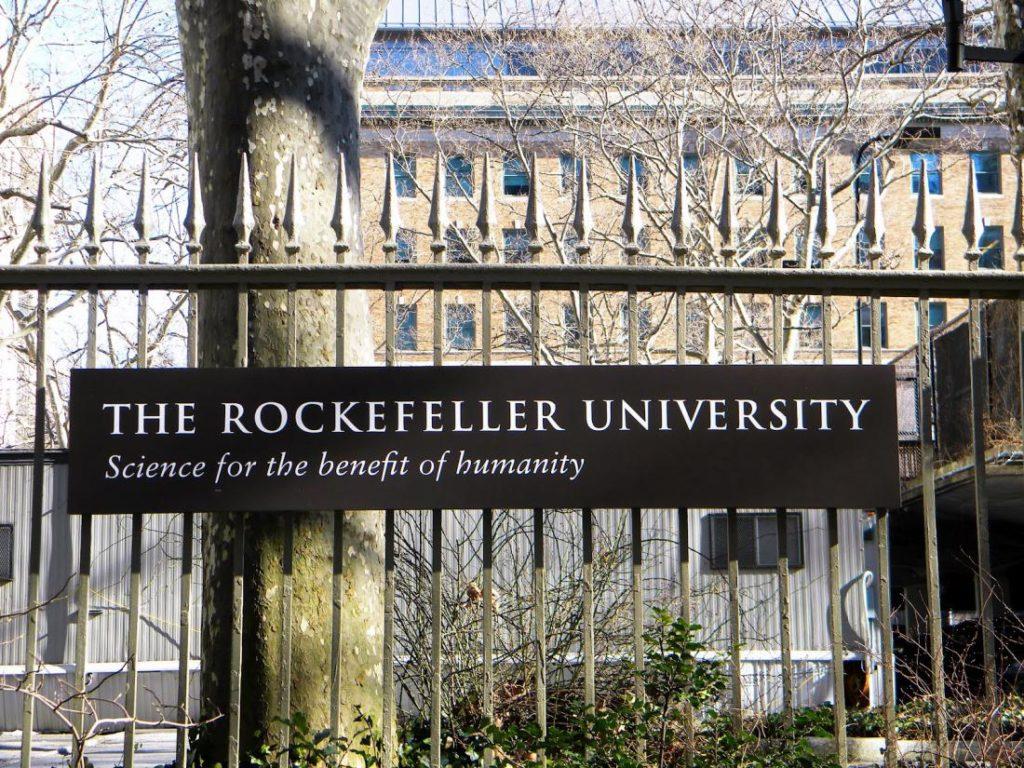 Университет Рокфеллера