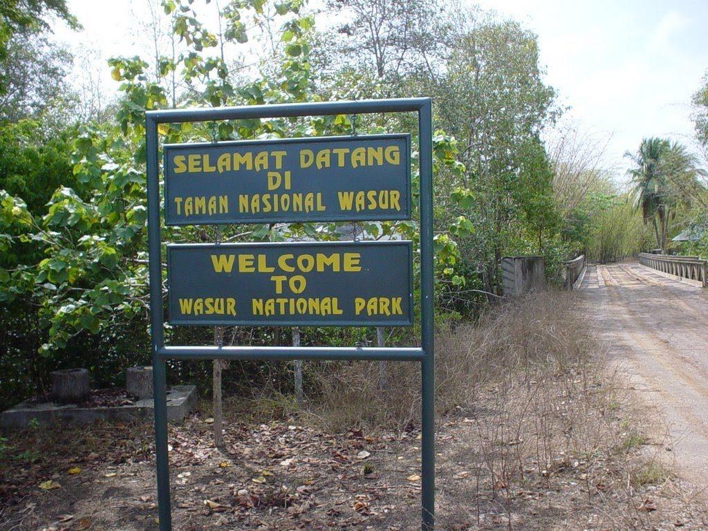 Национальный парк Васур(Taman Nasional Wasur)