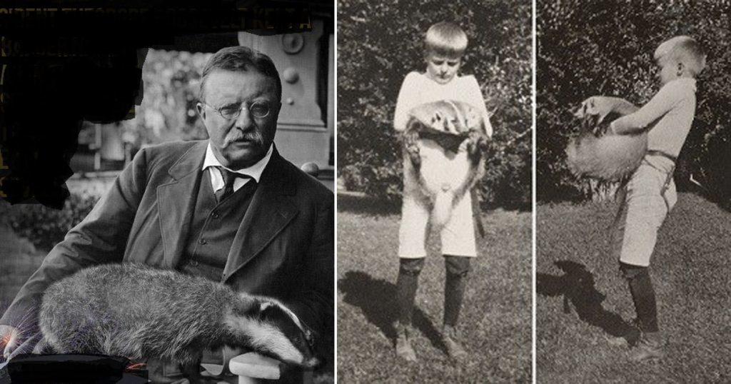 Гиена и барсук Теодора Рузвельта