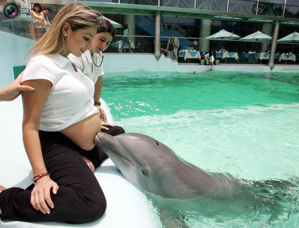 Дельфинотерапия для беременных, Лима, Перу