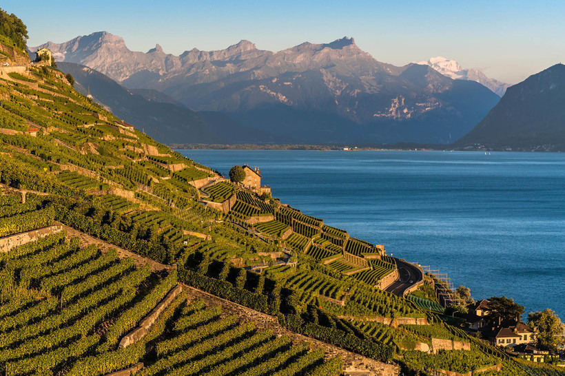 Лаво, Швейцария