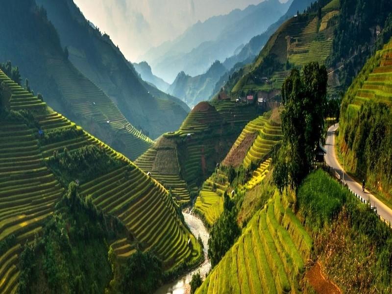 Му Цан Чай, Вьетнам