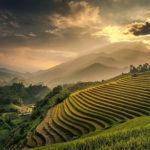10 красивых террасных полей