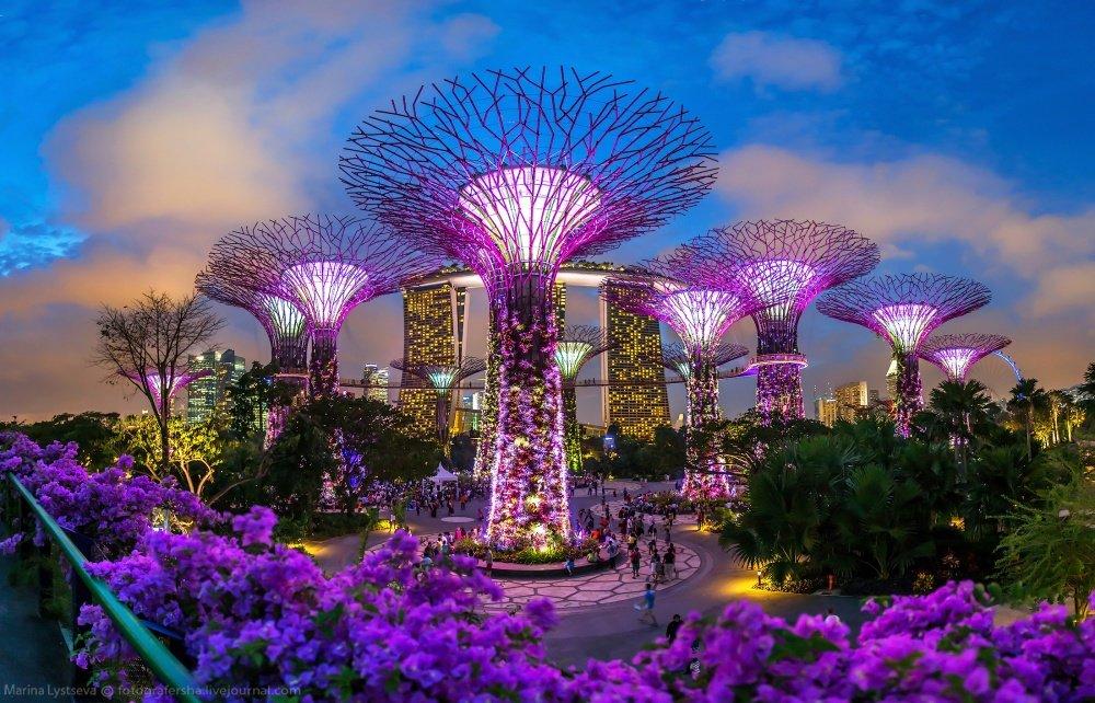 Сады у залива, Сингапур