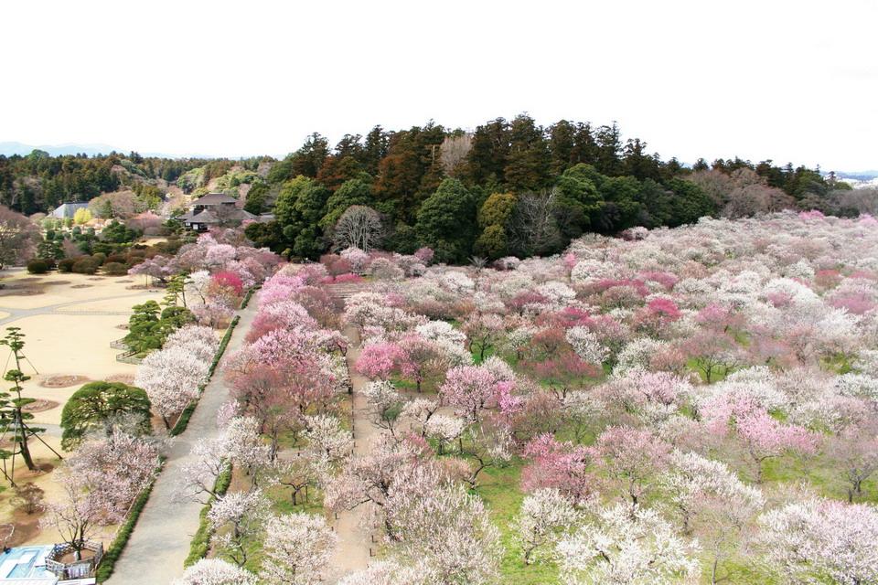 Kairaku-en, Mito, Япония