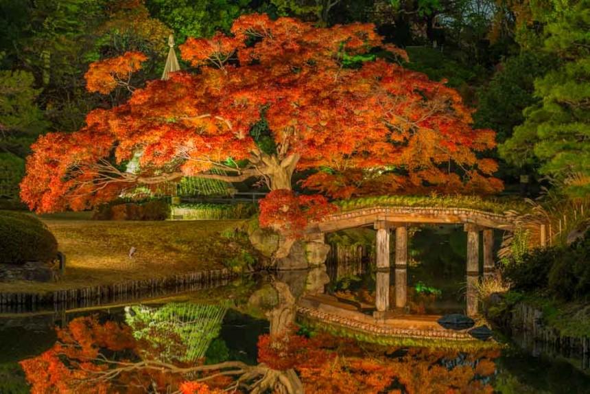 Rikugien Garden, Токио, Япония