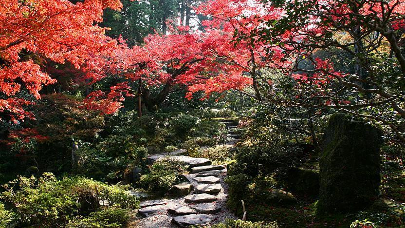 Shugakuin Rikyu Imperial Villa, Киото, Япония