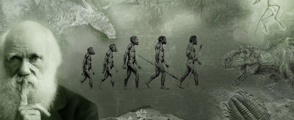Дарвин Страдал От Социальной Тревоги