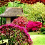 8 прекрасных японских садов